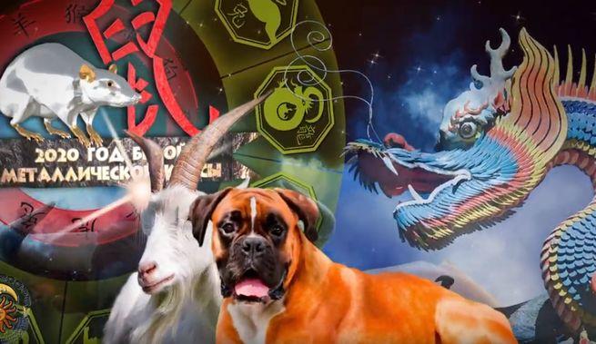 Китайский гороскоп - для тех кто родился в год крысы