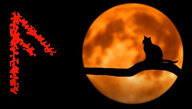 Ключевое значение руны Ансуз – знак