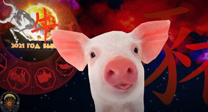 Людей, представляющих знак Свиньи