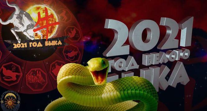 Для Змей предстоящий год будет крайне комфортным и уютным