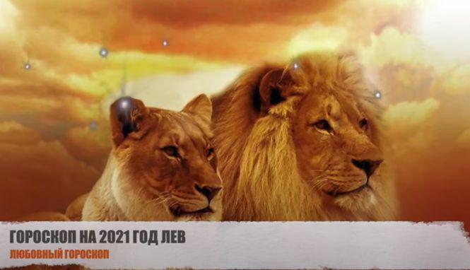 Для Львов год Быка